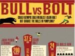Bull vs Bolt