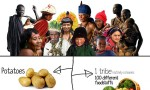 Tribal Peoples Contributions to Humanity [Infographic]
