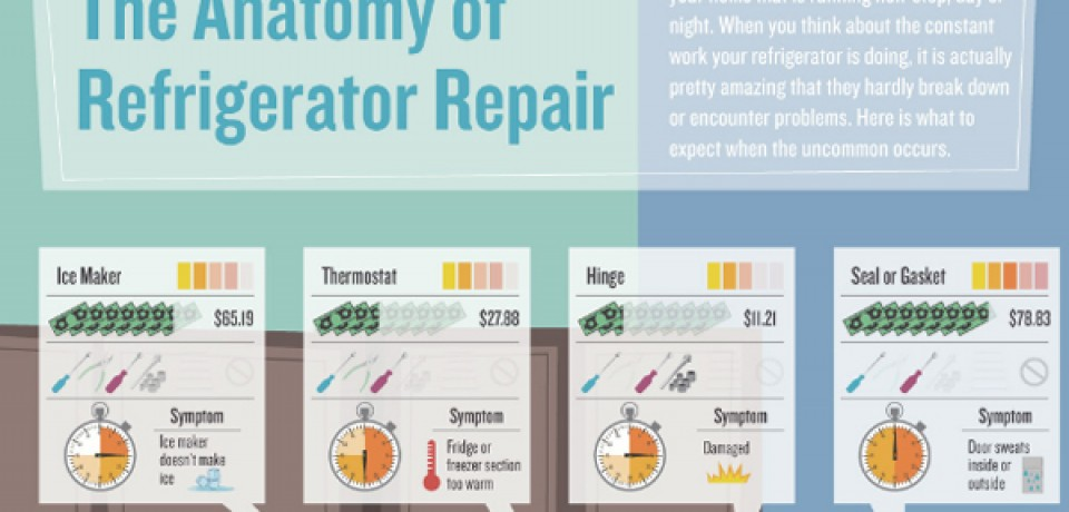 The Anatomy of Refrigerator Repair