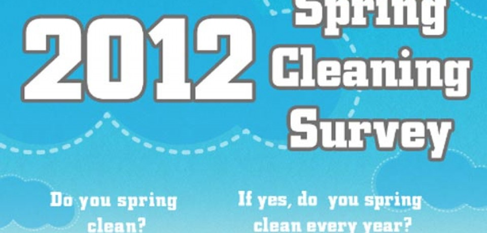 Spring Cleaning Survey