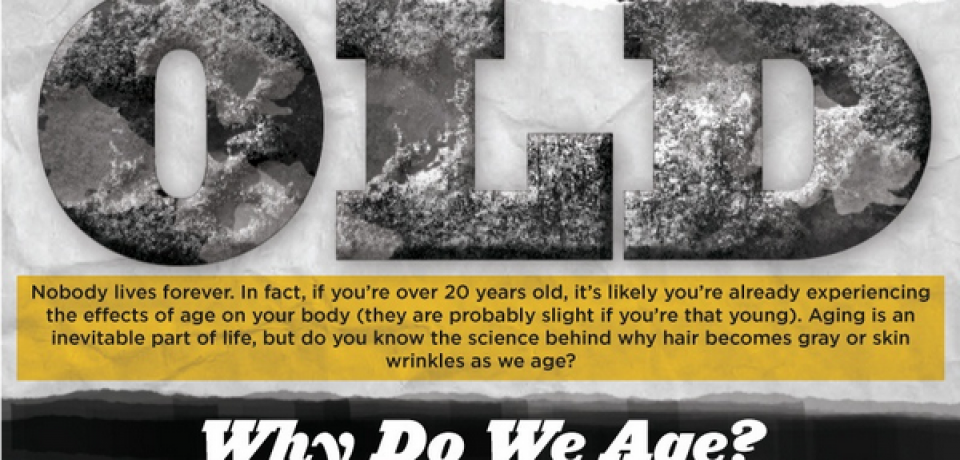 Science of Getting Old [Infographic]
