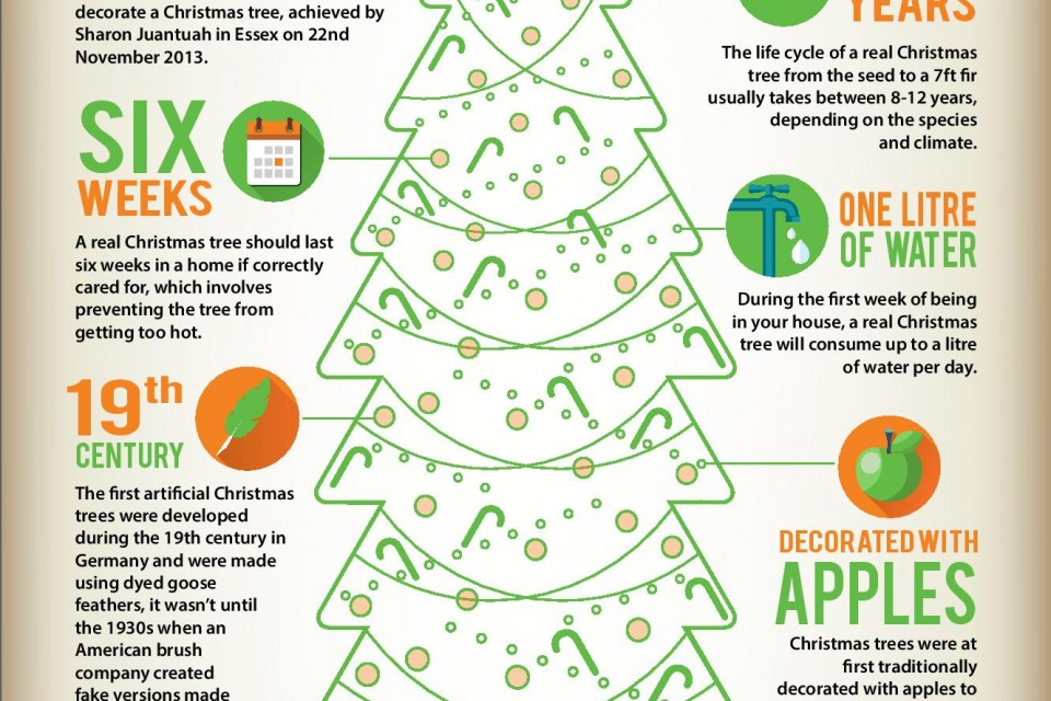 The history of Christmas trees [Infographic]
