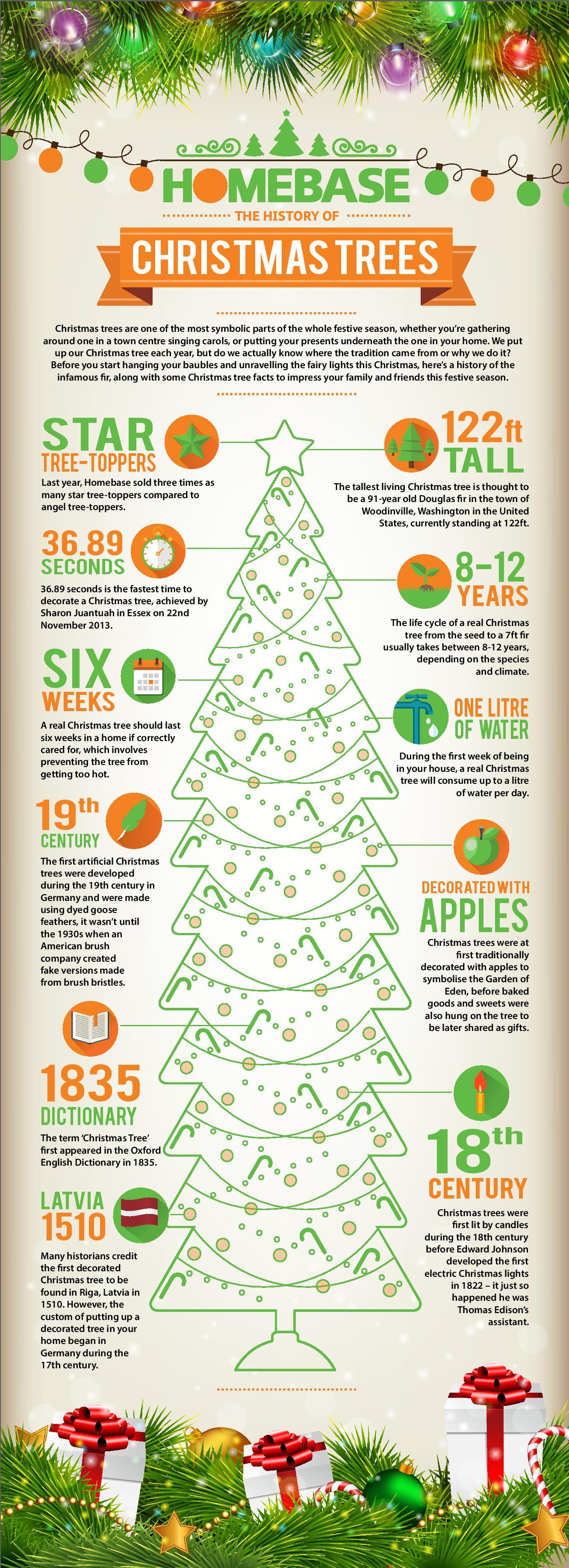 infografik die geschichte des weihnachtsbaumes. Black Bedroom Furniture Sets. Home Design Ideas