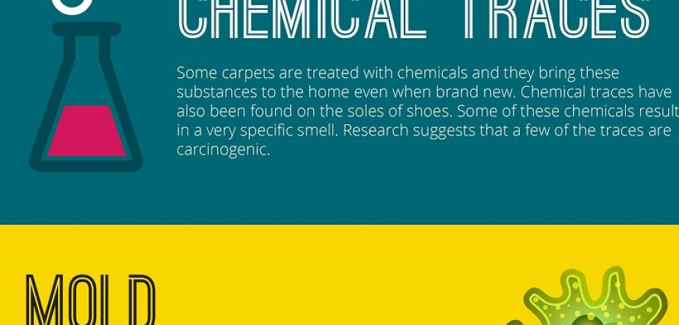 What is hiding in your carpet? [Infographic]