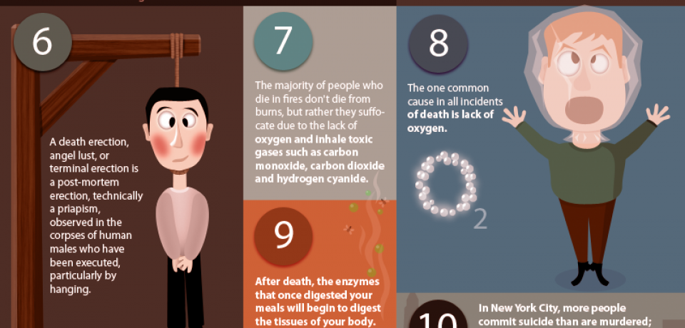 Things You Didn't Know About Death [Infographic]