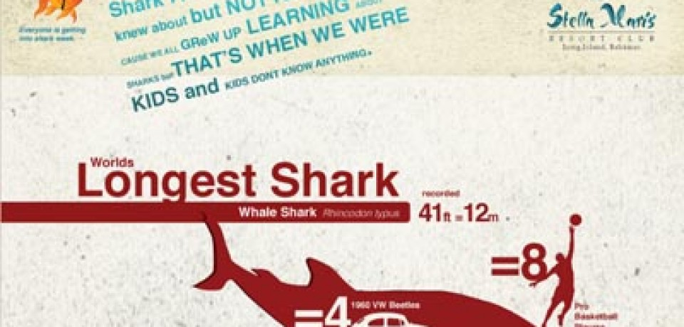 Things You Never Knew About Sharks