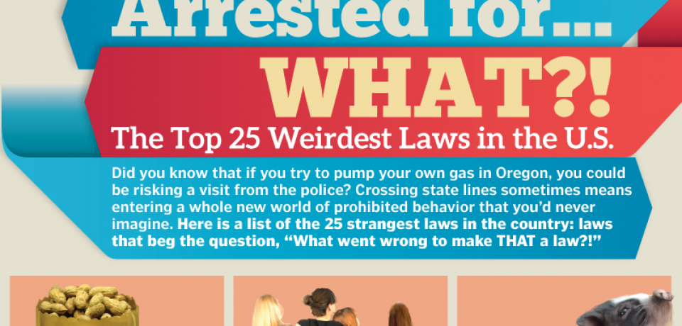 Arrested for What? The Top 25 Weirdest Laws in the U.S. [Infographic]